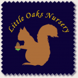 Little Oaks Nursery